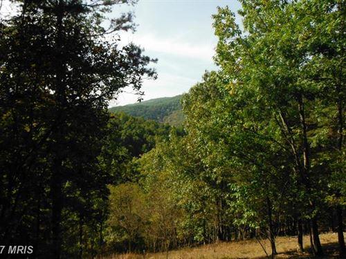 Prime Property : Moorefield : Hardy County : West Virginia