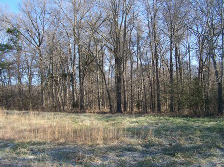 Unrestricted Land In Silk Hope : Siler City : Chatham County : North Carolina