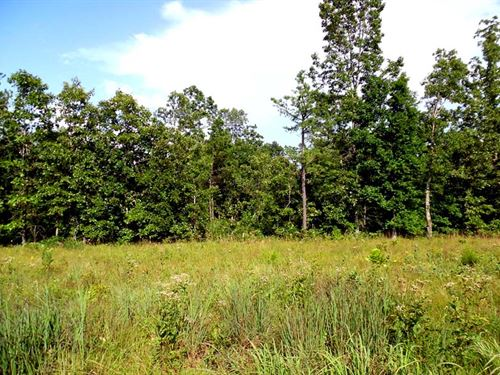 16 Acres With Great Hunting : Winona : Shannon County : Missouri