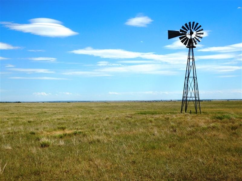 Pasture Land Auction In Sd : Highmore : Hyde County : South Dakota