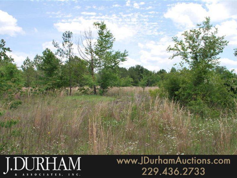 100 Acres, Emanuel County, Ga : Lyons : Emanuel County : Georgia