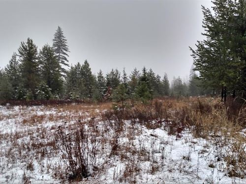Jared Ranch Estates : Usk : Pend Oreille County : Washington