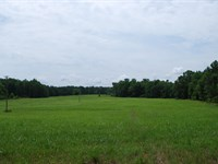 110 Acres With Pond & Pasture : Union : Union County : South Carolina