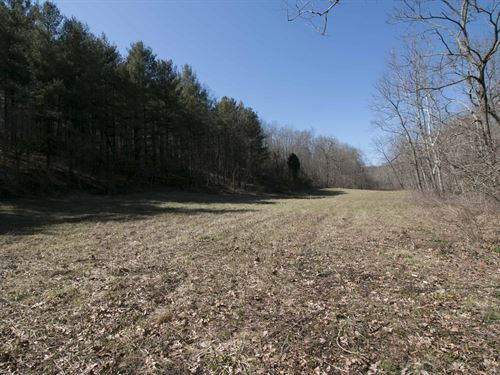 Cr 6 - 152 Acres : Kitts Hill : Lawrence County : Ohio