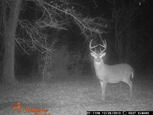 46-015 Long Branch : Tuskegee : Macon County : Alabama