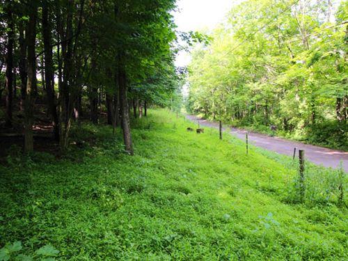 32 Acres Organic Land : Bloomsburg : Columbia County : Pennsylvania