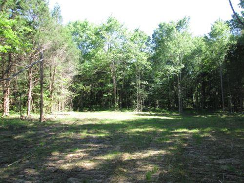 60 Acres In Adair County, Ky : Columbia : Adair County : Kentucky