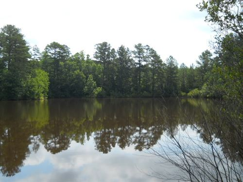 125 Ac On Bohannon & Beavers Rd. : Grantville : Coweta County : Georgia