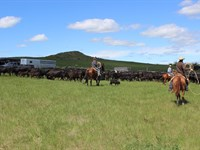Otter Creek Ranch : Ashland : Powder River County : Montana