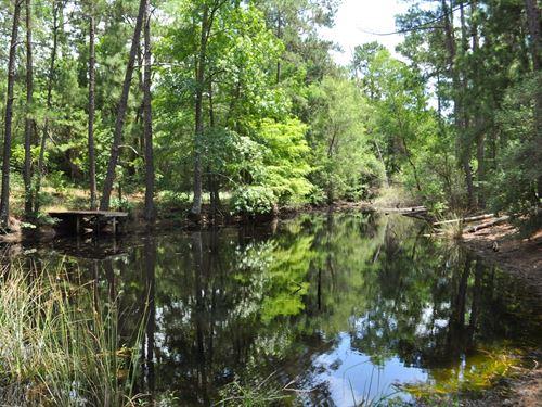 43 Acres 4-M Tree Farm Crockett : Crockett : Houston County : Texas