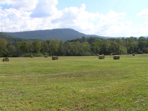 Scenic Farm Land : Pikeville : Bledsoe County : Tennessee