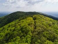 High Elevation In Virginia : Stuart : Patrick County : Virginia