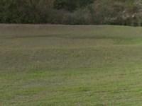 Columbia County, Fl $133,000 Neg : Fort White : Columbia County : Florida
