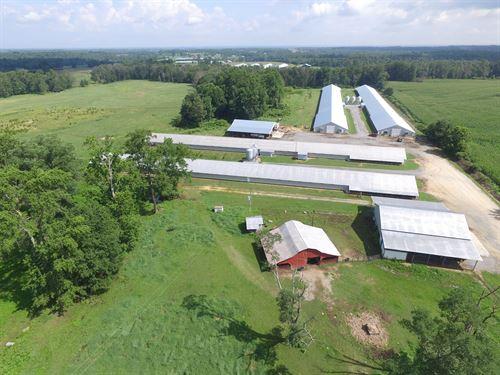 Four House Broiler Farm : Fyffe : De Kalb County : Alabama