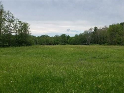 Hidden Meadows Hunting Land : Macomb : Saint Lawrence County : New York