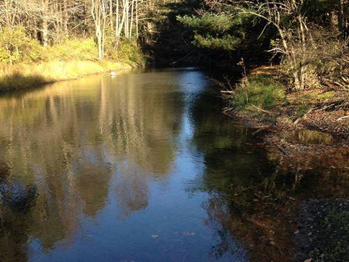 60 Acres Timber & Farmland 2 Ponds : Greene : Chenango County : New York