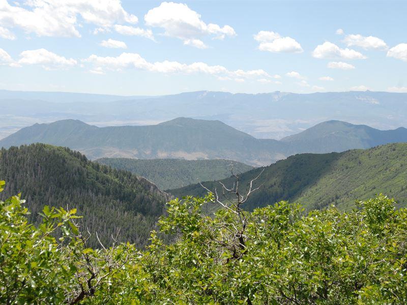 West Elk Creek Ranch : Silt : Garfield County : Colorado