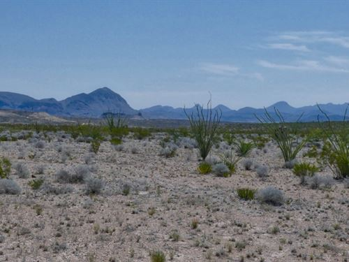 Tract 2552 40 Acres In Terlingua : Terlingua : Brewster County : Texas