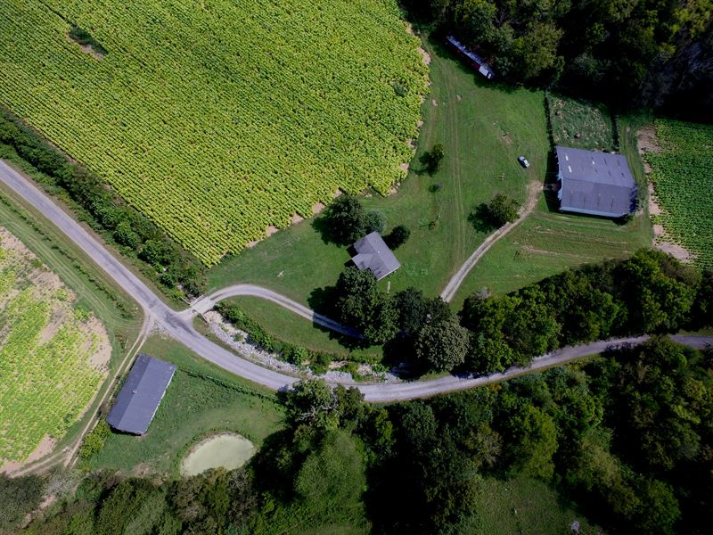 Large Farm W/ Home, Ponds, & Views : Whitleyville : Jackson County : Tennessee