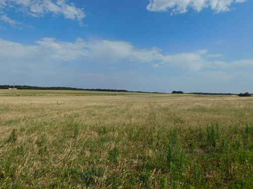 8/3/17 Auction 125 Acres Of Crop : Watonga : Kingfisher County : Oklahoma
