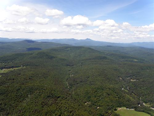Chase Mountain Forest : Berlin : Washington County : Vermont