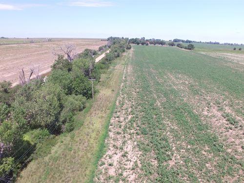 Arkansas River Farms Tract 3 : Wiley : Bent County : Colorado
