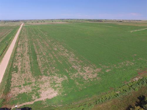 Arkansas River Farms Tract 4 : Wiley : Bent County : Colorado