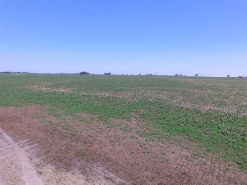 Arkansas River Farms Tract 5 : McClave : Bent County : Colorado