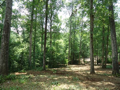 45 Ac Major Price Reduction : Covington : Newton County : Georgia