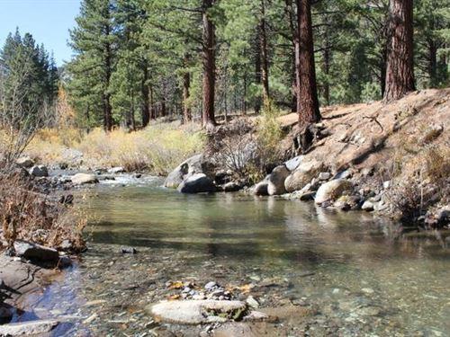 California 20 Ac. Miningclaim Creek : Markleeville : Alpine County : California