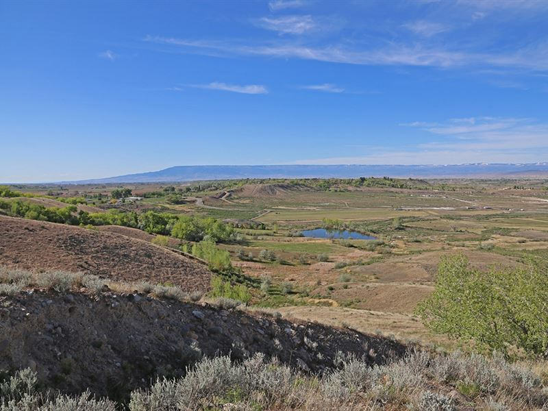 Franklin Mesa Farm : Montrose : Montrose County : Colorado