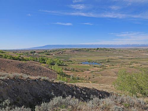 Franklin Mesa Farm : Montrose : Colorado