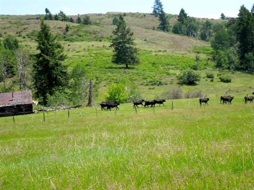 Brenner Cattle Ranch : Curlew : Ferry County : Washington