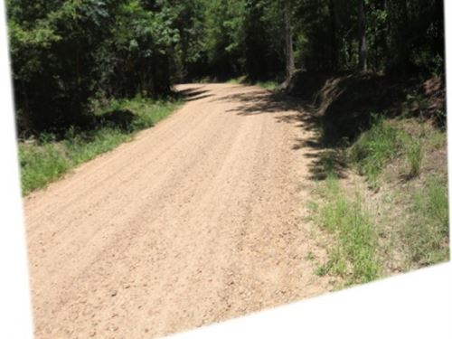 39 Acres In Holmes County : Lexington : Holmes County : Mississippi