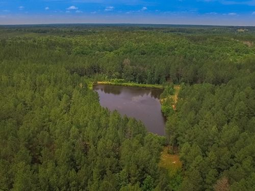 180 Acres Of Mature Timber & Pond : Mitford : Chester County : South Carolina