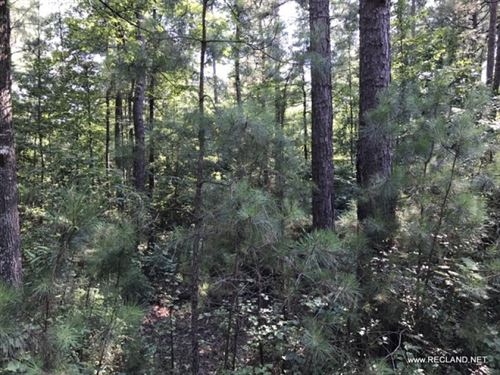 21 Ac - Timberland & Hunting Tr : Banks : Bradley County : Arkansas