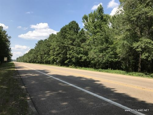 34.1 Ac - Timberland On Edge Of Tow : Hampton : Calhoun County : Arkansas