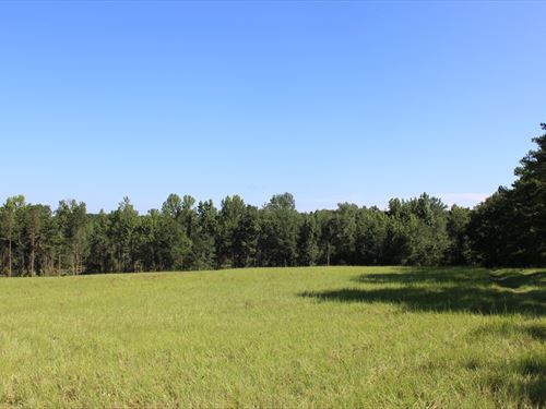 Recreation Or Homesite : Knoxville : Crawford County : Georgia