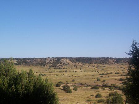 Hatchet Ranch 50 Acres : Pueblo : Pueblo County : Colorado