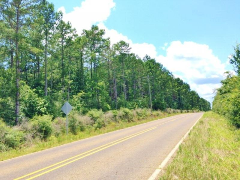 99 Acres Amite County Ms Ranch For Sale Smithdale Amite