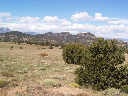 Majors Ranch 121 Acres : La Veta : Huerfano County : Colorado