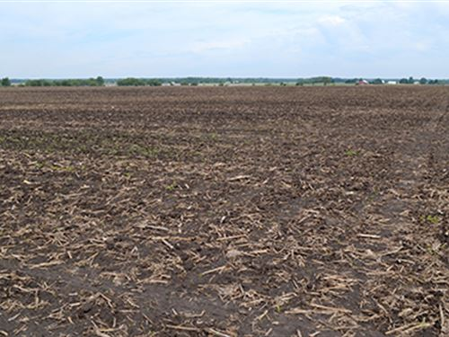 Land Auction In Newton County : Morocco : Newton County : Indiana