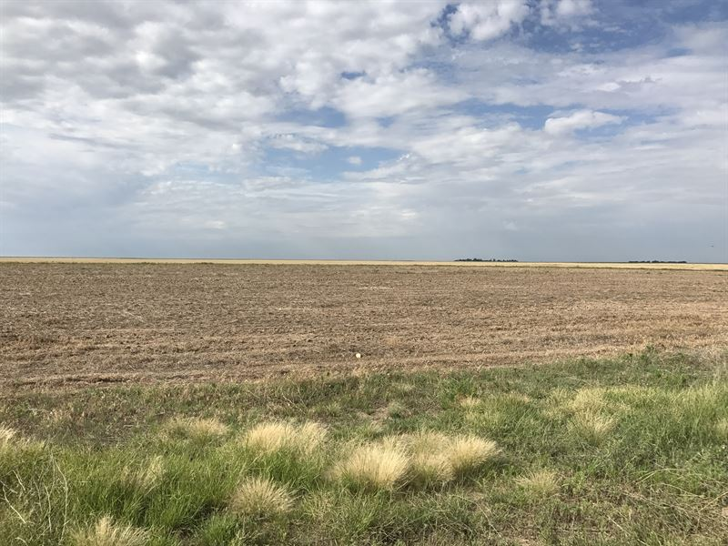 Greeley County Home With 62 Acres : Tribune : Greeley County : Kansas