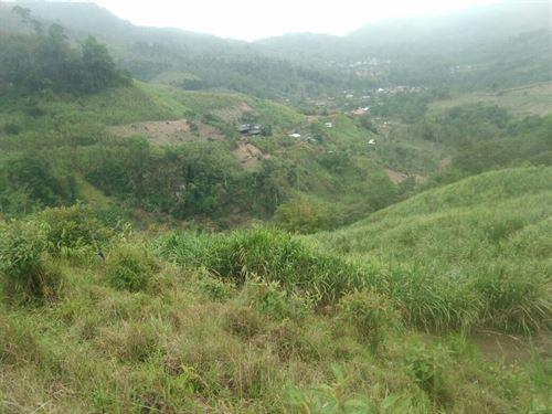 25 Hectares - Farm At Puerto Viejo : Puerto Viejo De Sarapique : Costa Rica