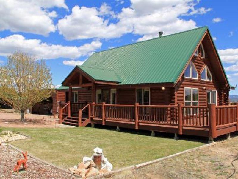 Colorado Mountain Luxury Log Home Ranch For Sale