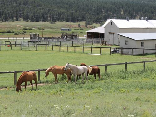 Historic Crystal Peak Ranch : Florissant : Teller County : Colorado