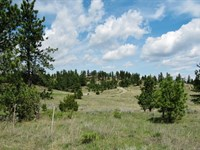 Sustainable Mountain Ranch : Lavina : Musselshell County : Montana
