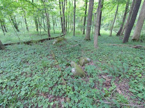 Leeper Rd - 30 Acres : Cambridge : Guernsey County : Ohio