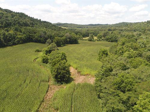 Crop Land, Barn, Hunting : Somerset : Pulaski County : Kentucky