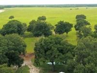 Long Hammock Ranch : Oxford : Sumter County : Florida